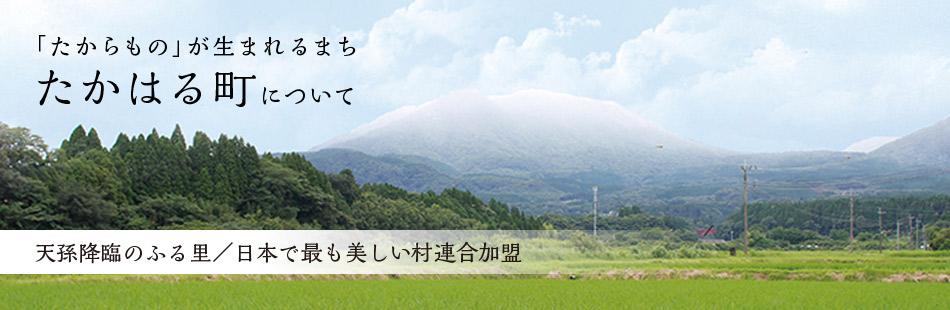 天孫降臨のふる里/日本で最も美しい村連合加盟