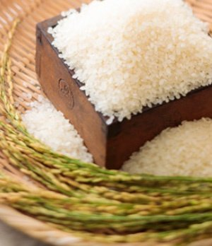 令和2年度産 小清水栽培米